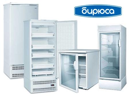 Ремонт холодильников Бирюса на дому в СПб