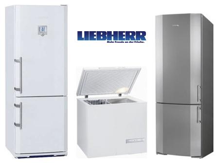 Ремонт холодильников Liebherr (Либхер) на дому в СПб