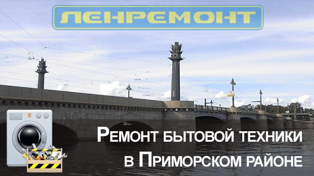 Ремонт бытовой техники в Приморском районе