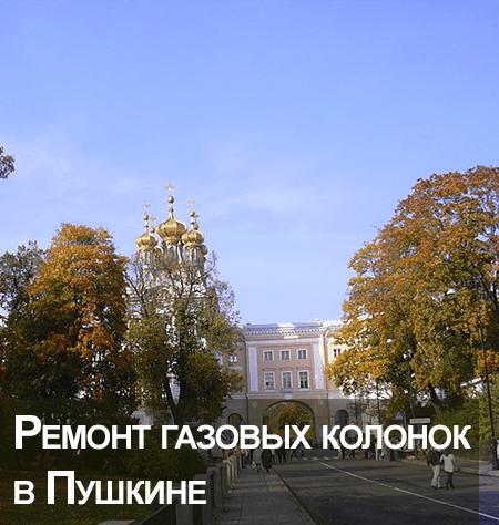 Ремонт газовых колонок в Пушкине