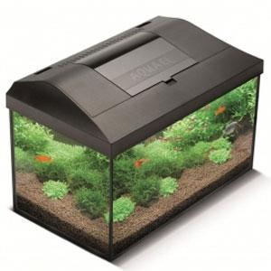Ремонт и обслуживание аквариумов