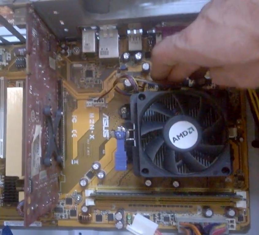 Компьютерная помощь в Приморском районе