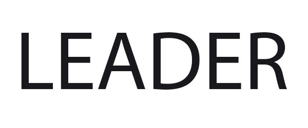 Ремонт бензопил Leader