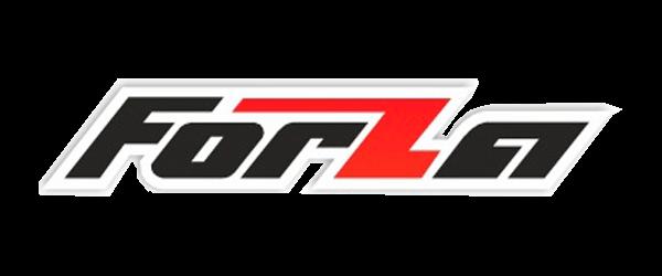 Ремонт бензопилы Forza (Форза)
